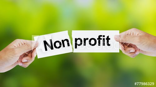 A Complete Guide: How to Run and Grow a Nonprofit Successfully 2021