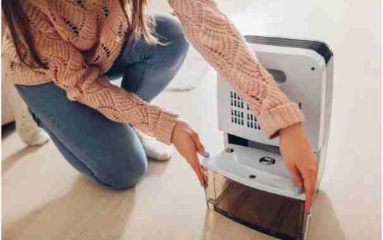 5 Things to Look For When Choosing the Best Commercial Dehumidifier.