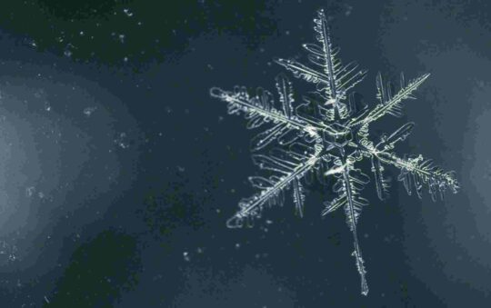 All About The Basics Of The Snowflake Test.